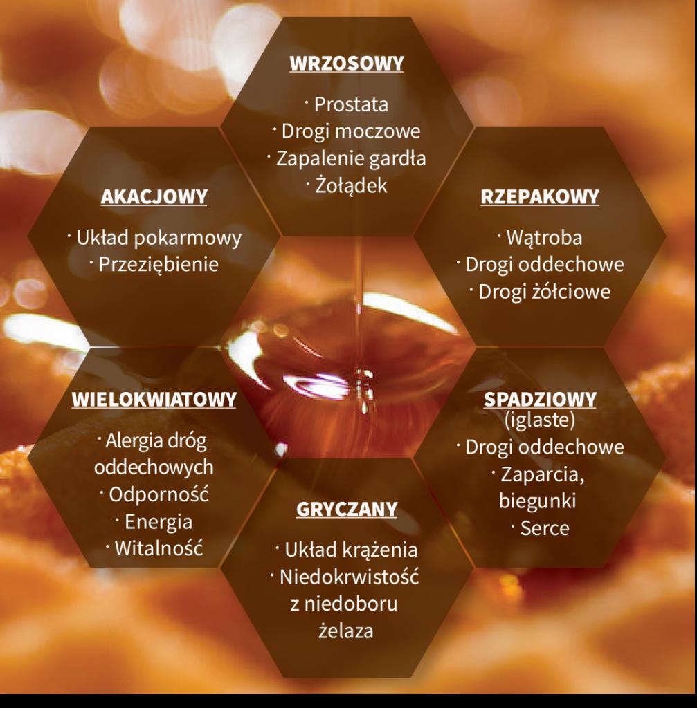 Miód – skarbnica zdrowia