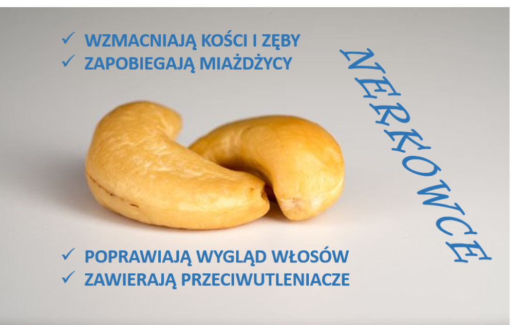 Cykl ORZECHOMANIA – nerkowce